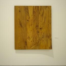 installed in Digital Gallery